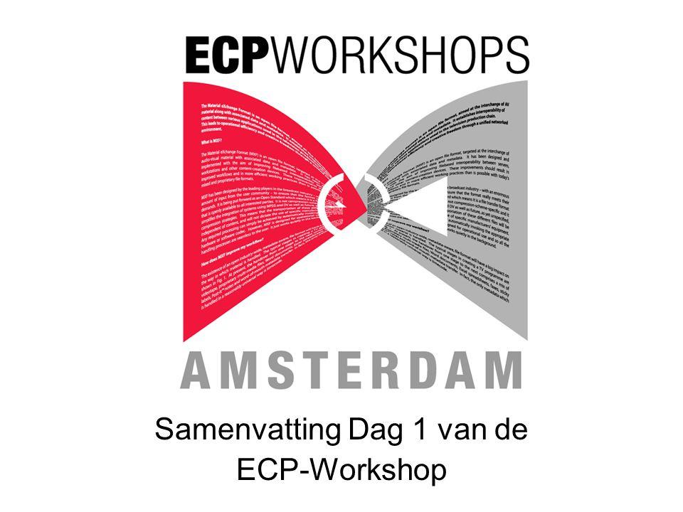 Samenvatting Dag 1 van de ECP-Workshop