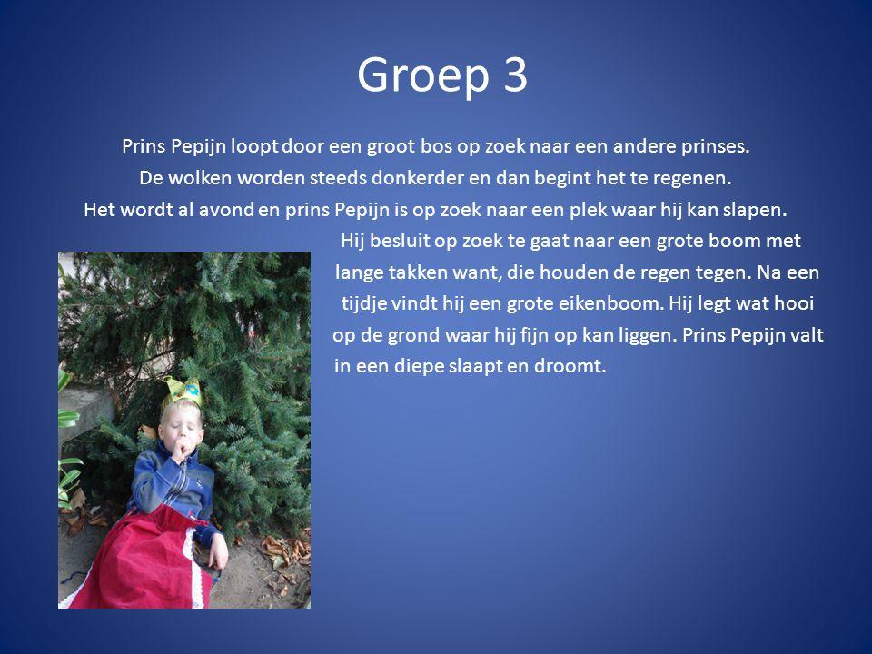 Groep 3 Prins Pepijn loopt door een groot bos op zoek naar een andere prinses. De wolken worden steeds donkerder en dan begint het te regenen.