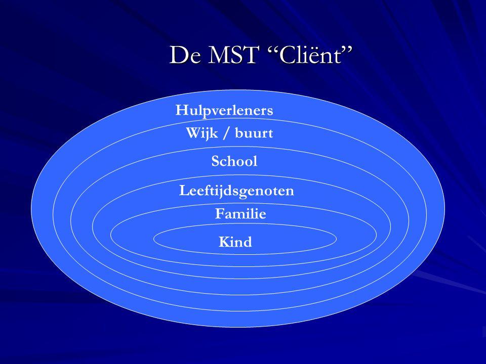 De MST Cliënt Hulpverleners Wijk / buurt School Leeftijdsgenoten