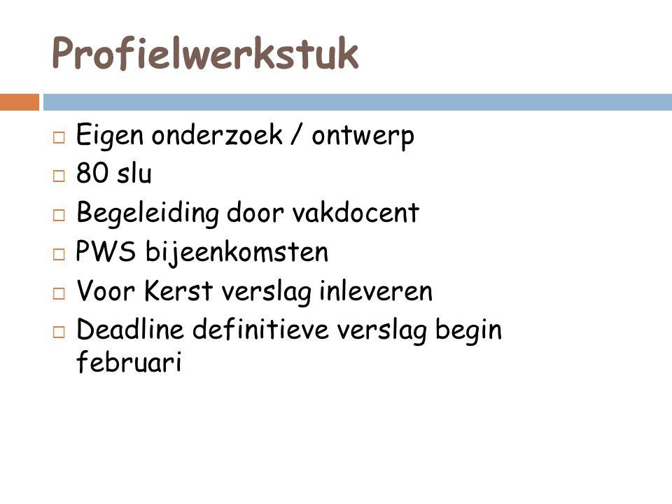 Profielwerkstuk Eigen onderzoek / ontwerp 80 slu