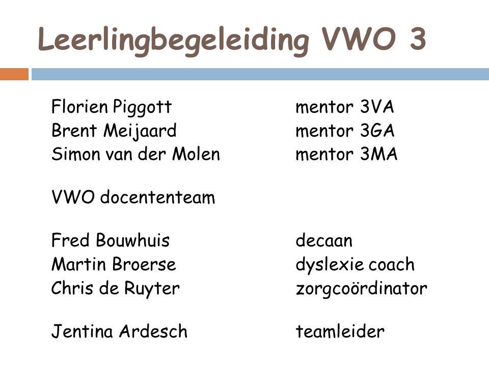 Leerlingbegeleiding VWO 3