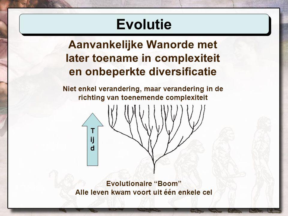 Evolutionaire Boom Alle leven kwam voort uit één enkele cel
