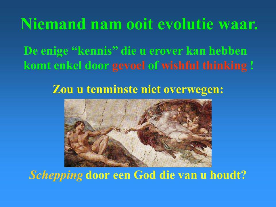 Niemand nam ooit evolutie waar.