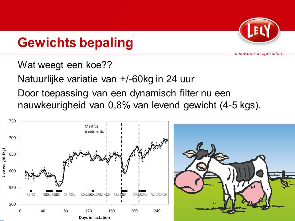 Gewichts bepaling Wat weegt een koe