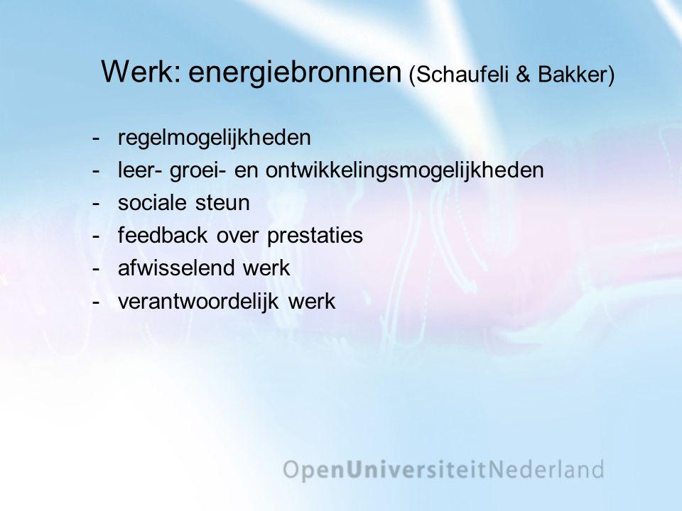 Werk: energiebronnen (Schaufeli & Bakker)
