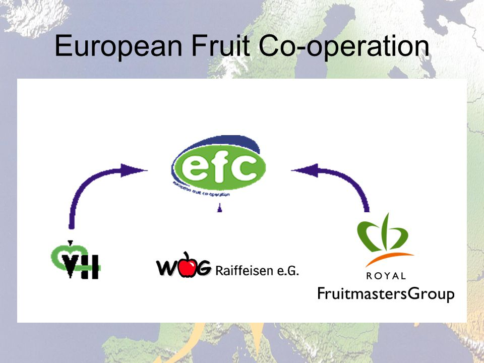 European Fruit Co-operation