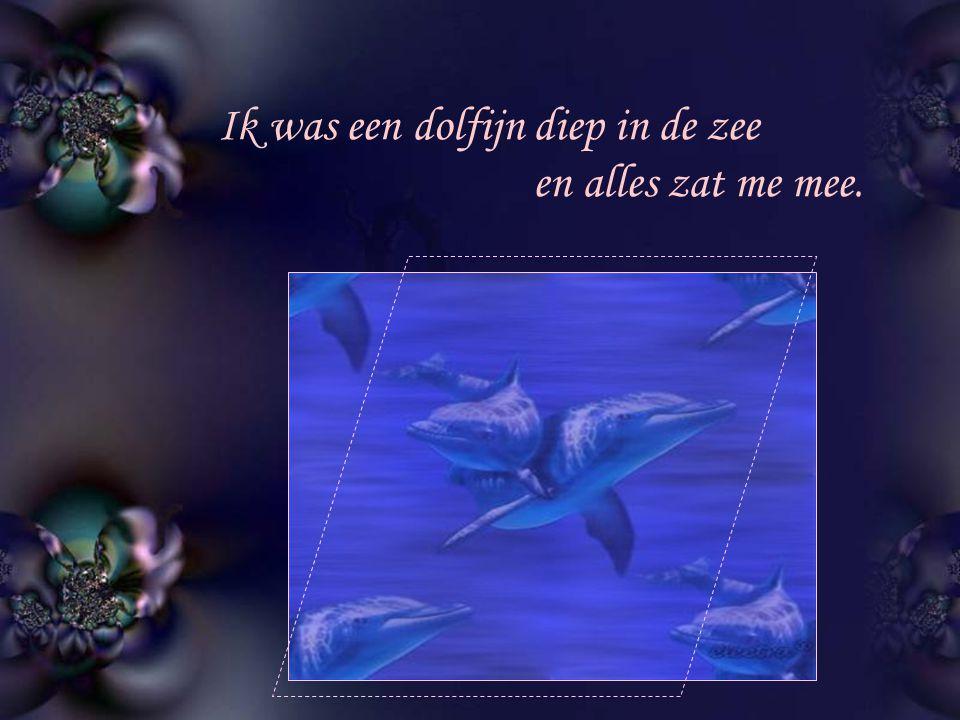 Ik was een dolfijn diep in de zee