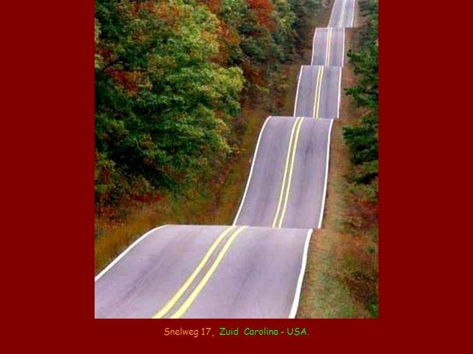 Snelweg 17, Zuid Carolina - USA.