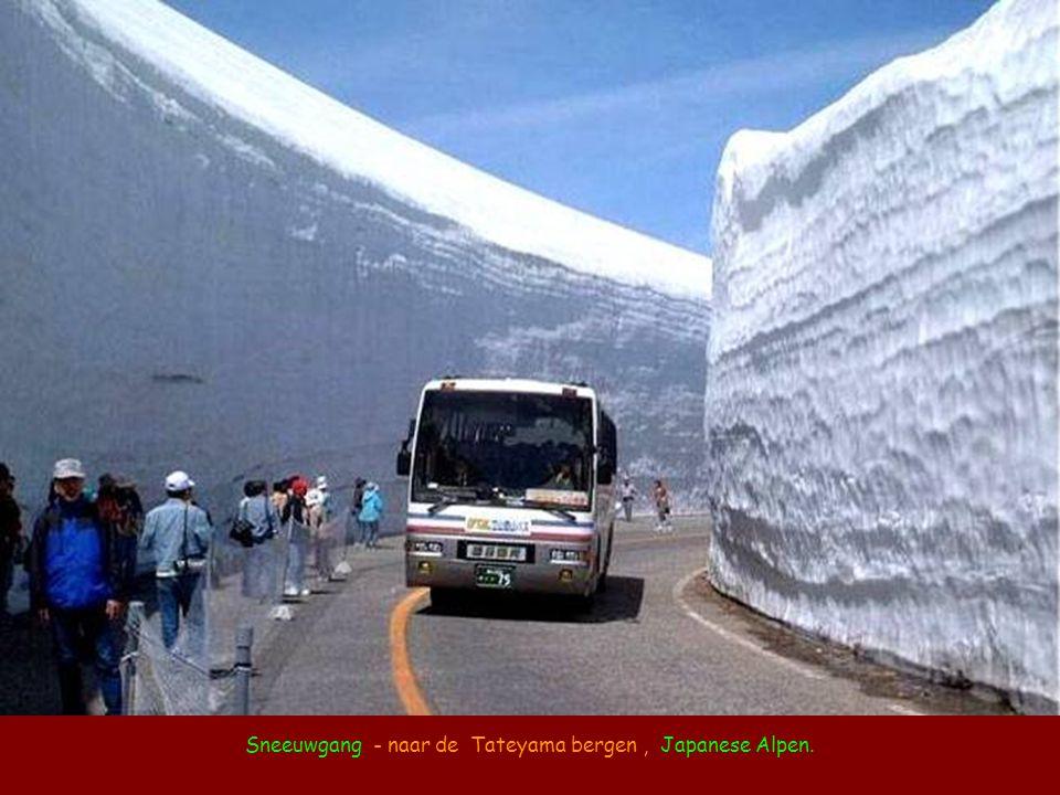 Sneeuwgang - naar de Tateyama bergen , Japanese Alpen.
