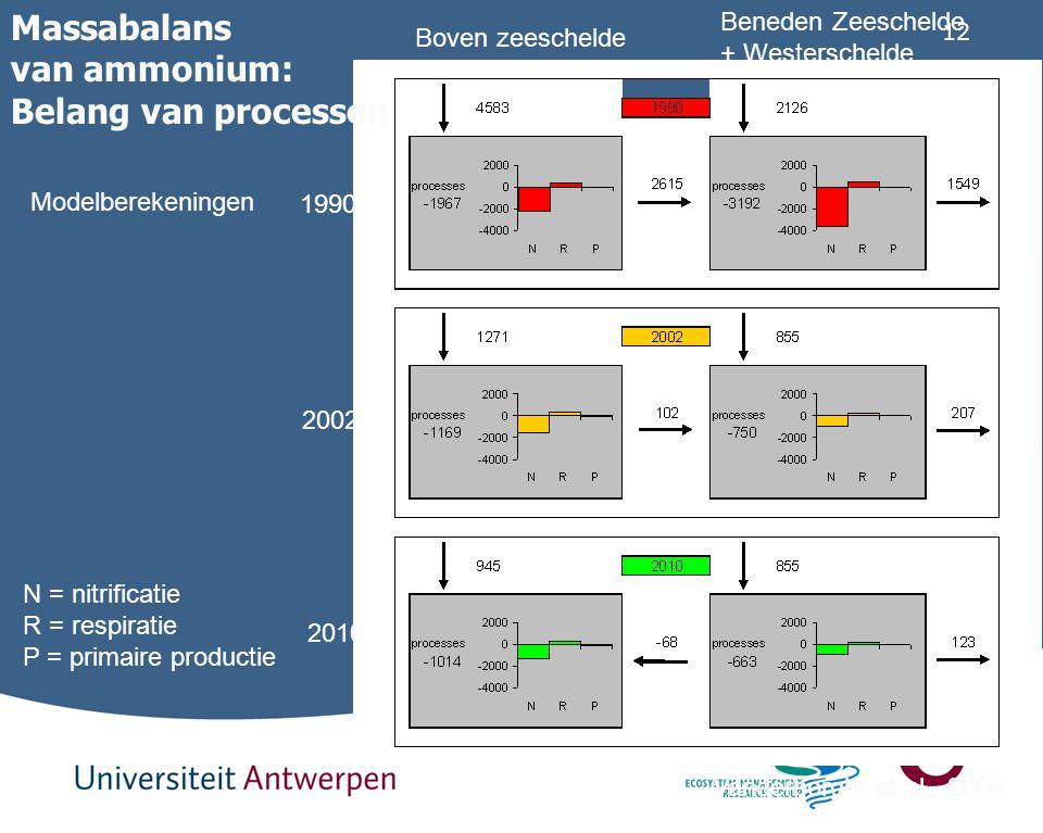 Massabalans van ammonium: Belang van processen Beneden Zeeschelde