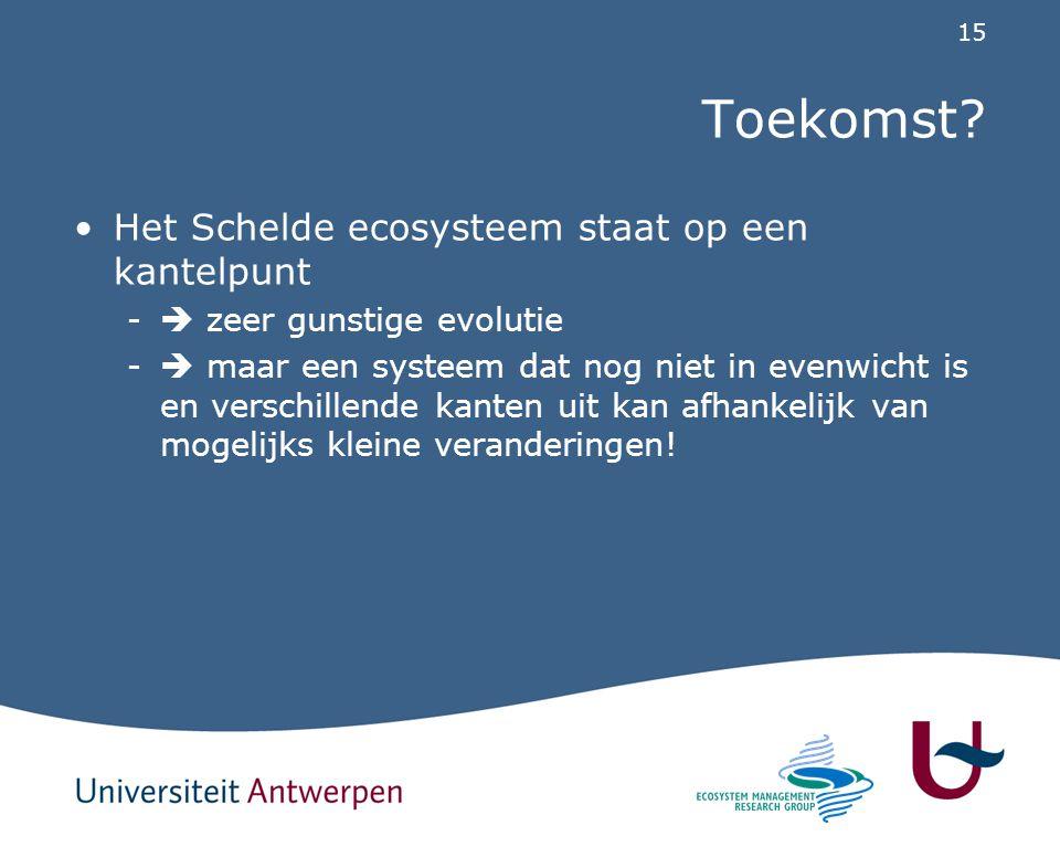 Toekomst Het Schelde ecosysteem staat op een kantelpunt