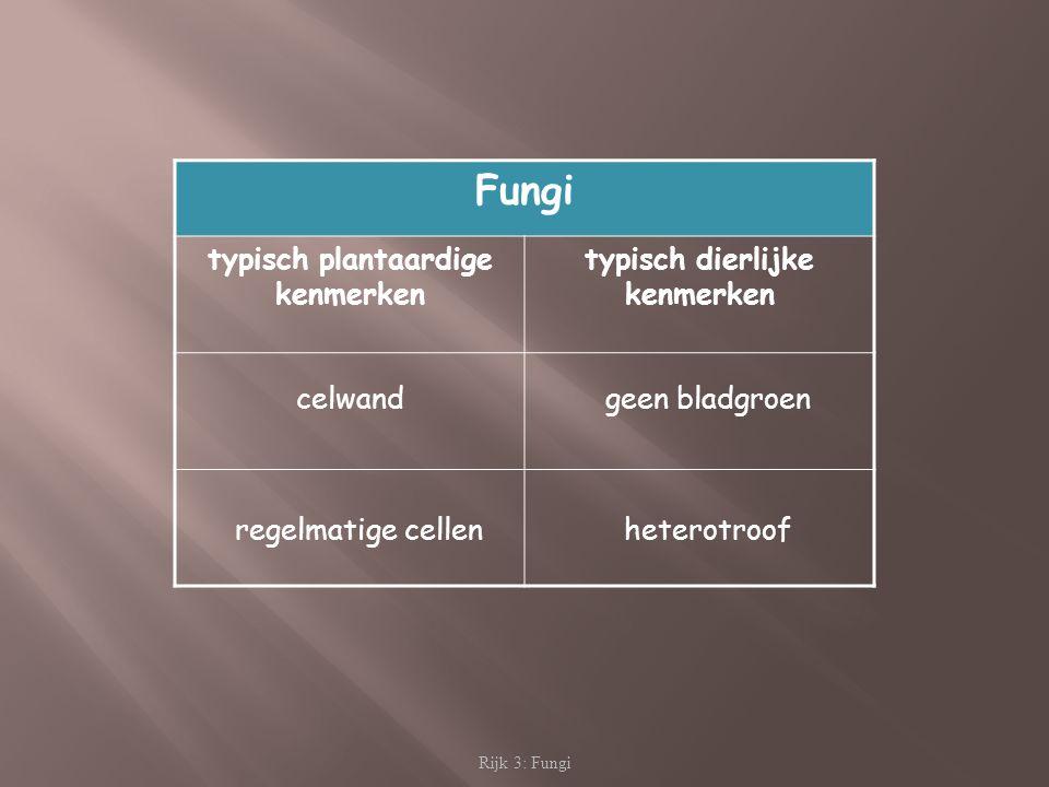 typisch plantaardige kenmerken typisch dierlijke kenmerken