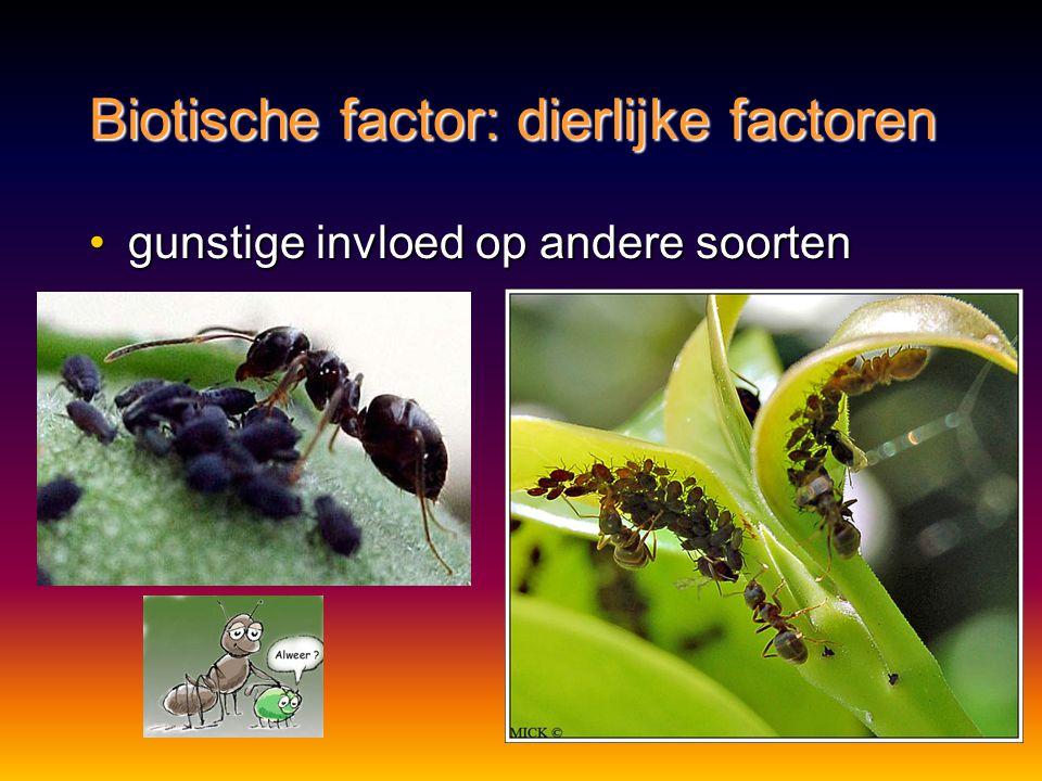 Biotische factor: dierlijke factoren