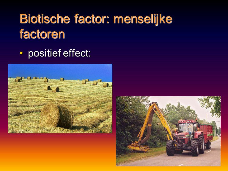 Biotische factor: menselijke factoren