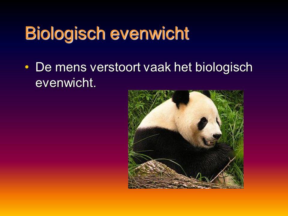 Biologisch evenwicht De mens verstoort vaak het biologisch evenwicht.