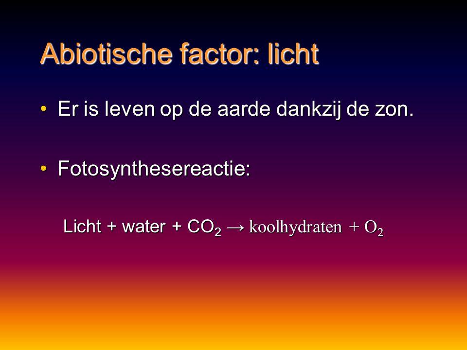Abiotische factor: licht