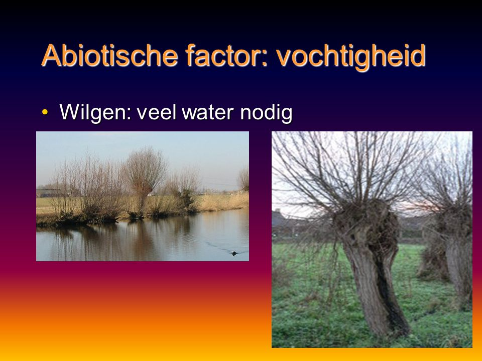 umweltfaktoren definition biologie