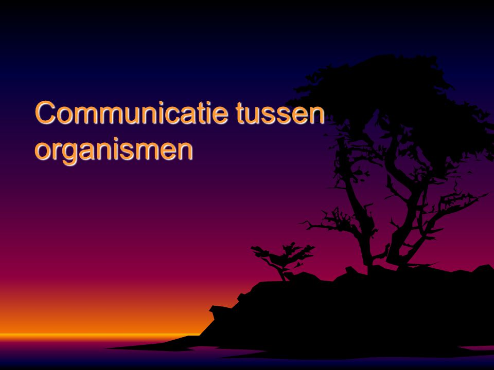 Communicatie tussen organismen