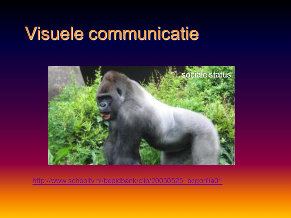 Visuele communicatie sociale status