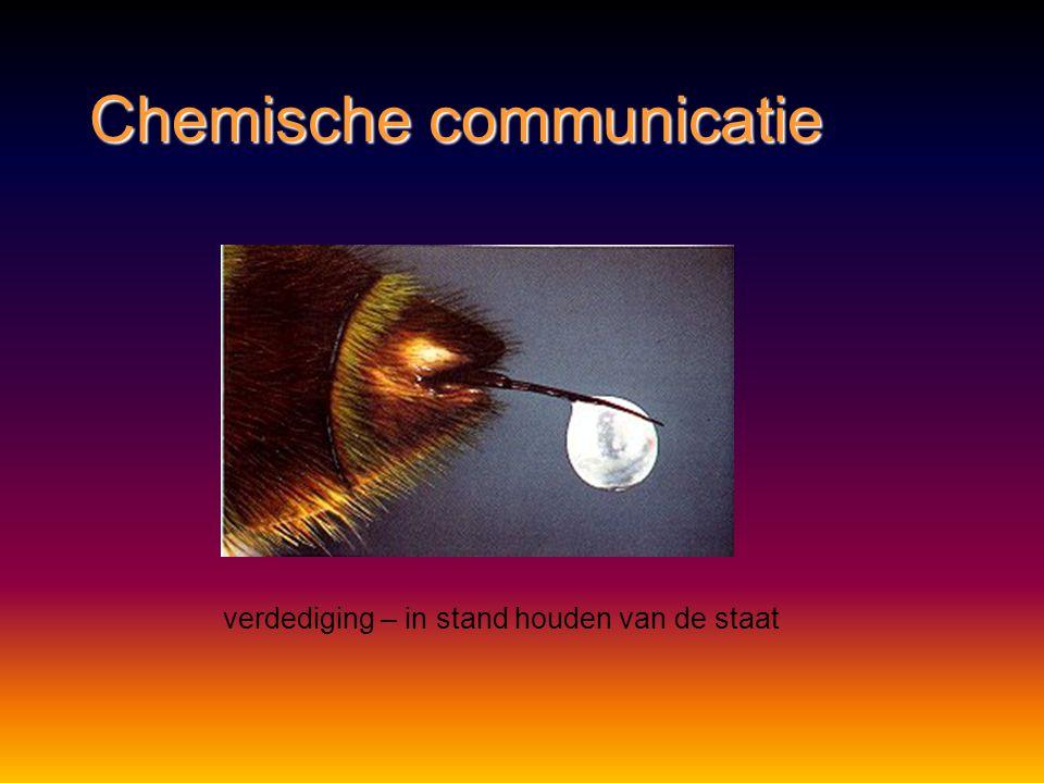 Chemische communicatie