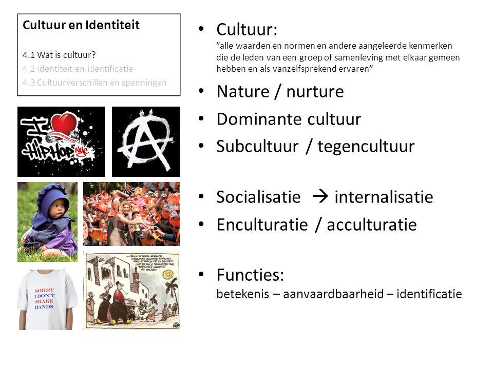 Subcultuur / tegencultuur Socialisatie  internalisatie