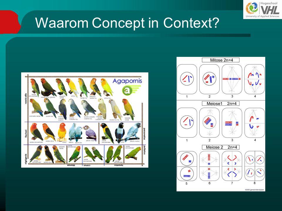 Waarom Concept in Context
