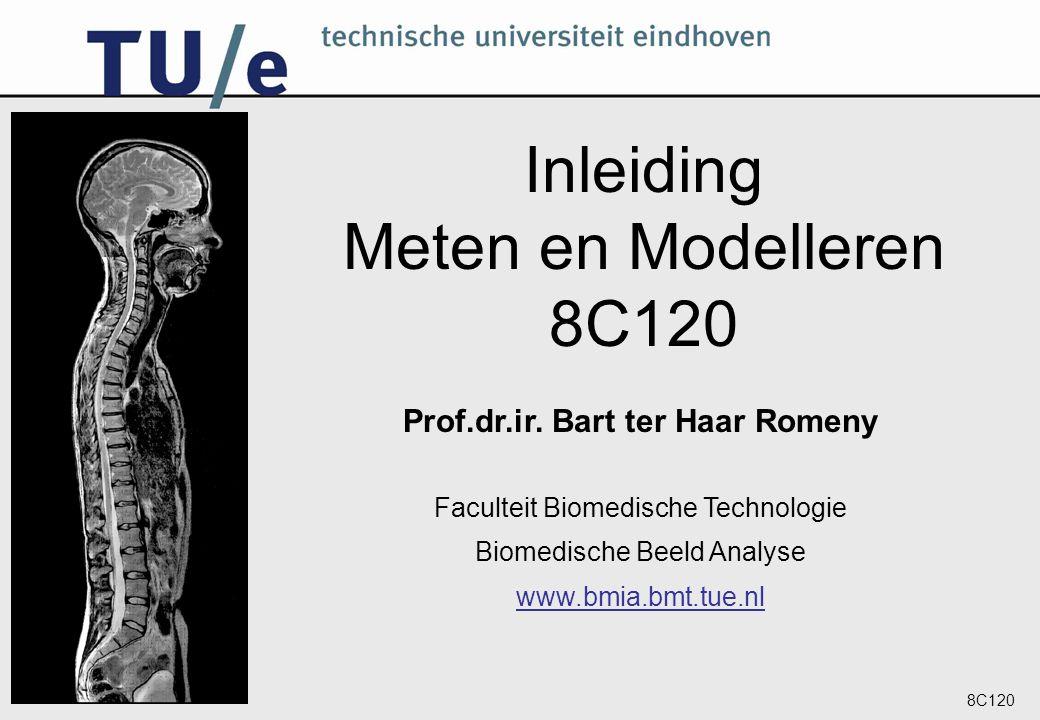 Prof.dr.ir. Bart ter Haar Romeny