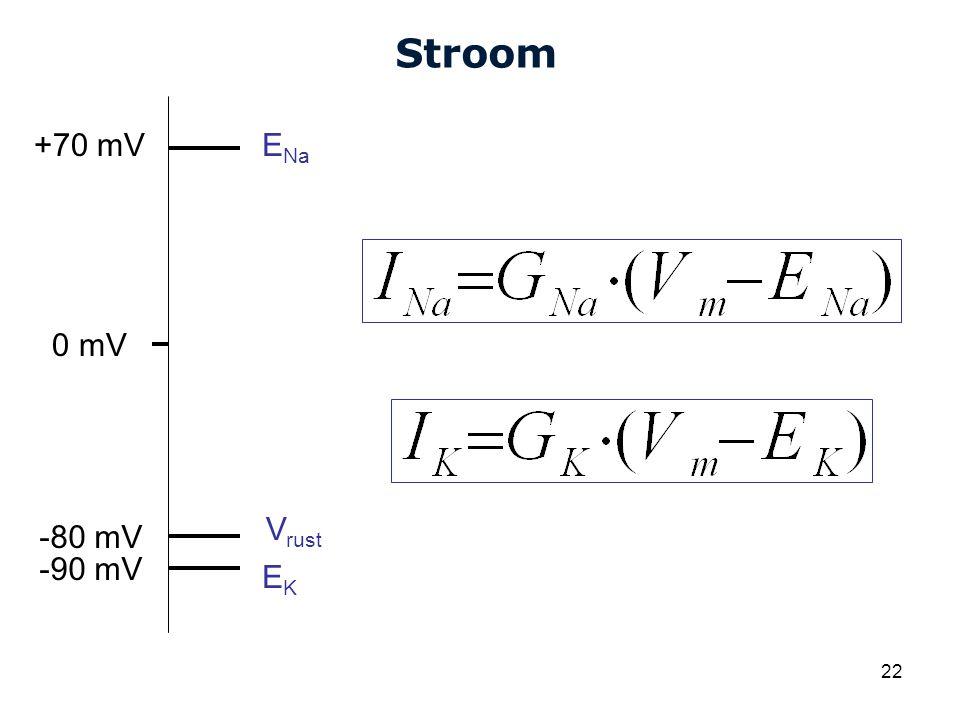 Stroom +70 mV ENa 0 mV Vrust -80 mV -90 mV EK