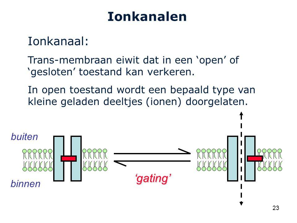 Ionkanalen Ionkanaal: 'gating'