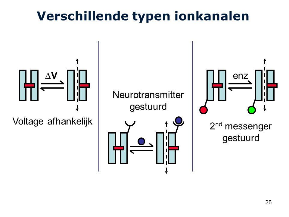 Verschillende typen ionkanalen
