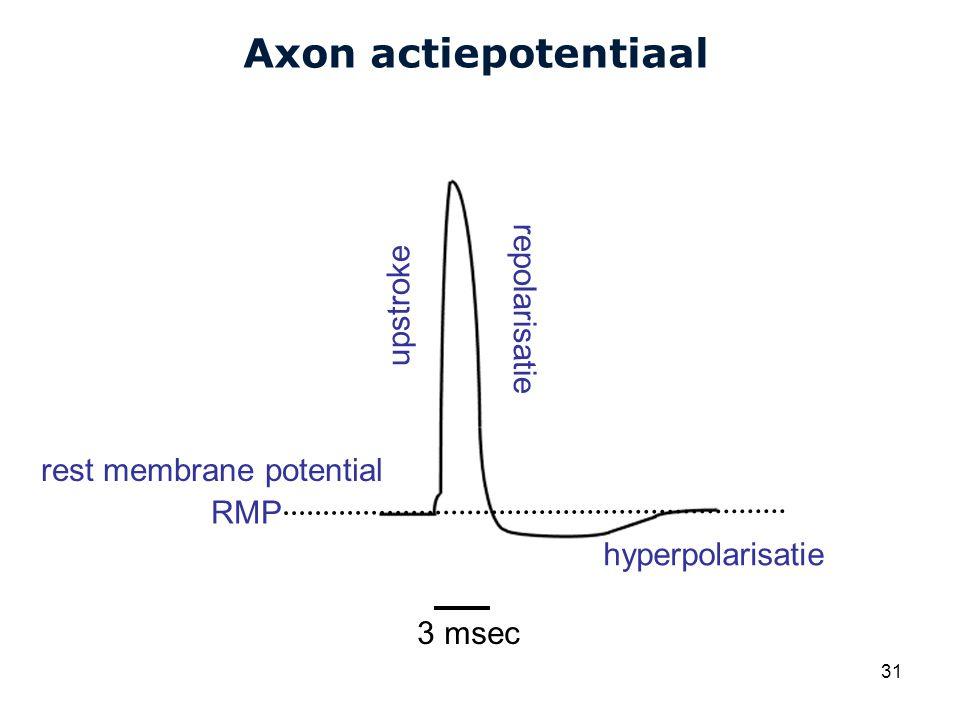 Axon actiepotentiaal repolarisatie upstroke rest membrane potential