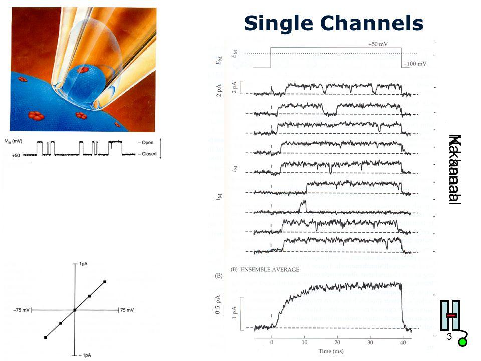 Single Channels Na kanaal K kanaal