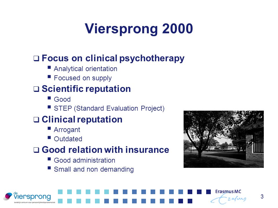 Viersprong 2000 Focus on clinical psychotherapy Scientific reputation