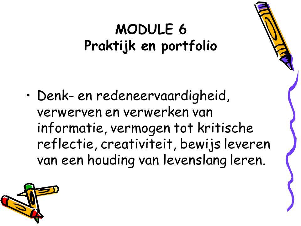 MODULE 6 Praktijk en portfolio
