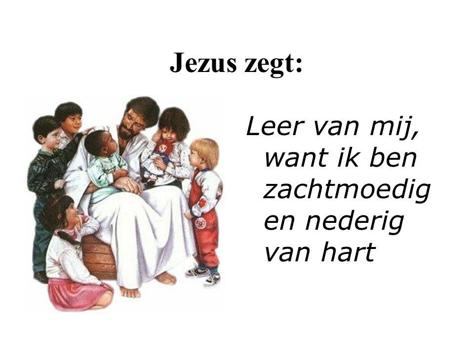 Jezus zegt: Leer van mij, want ik ben zachtmoedig en nederig van hart