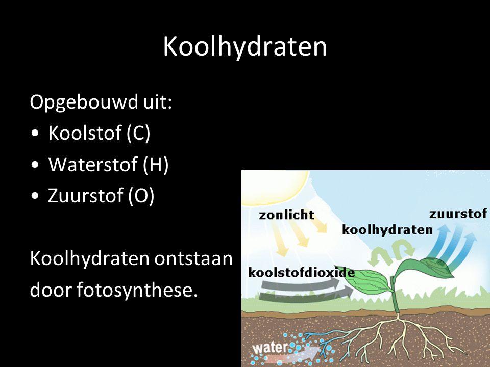 Koolhydraten Opgebouwd uit: Koolstof (C) Waterstof (H) Zuurstof (O)