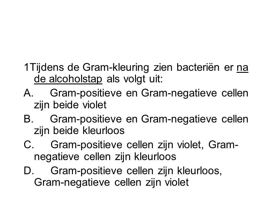 1Tijdens de Gram-kleuring zien bacteriën er na de alcoholstap als volgt uit: