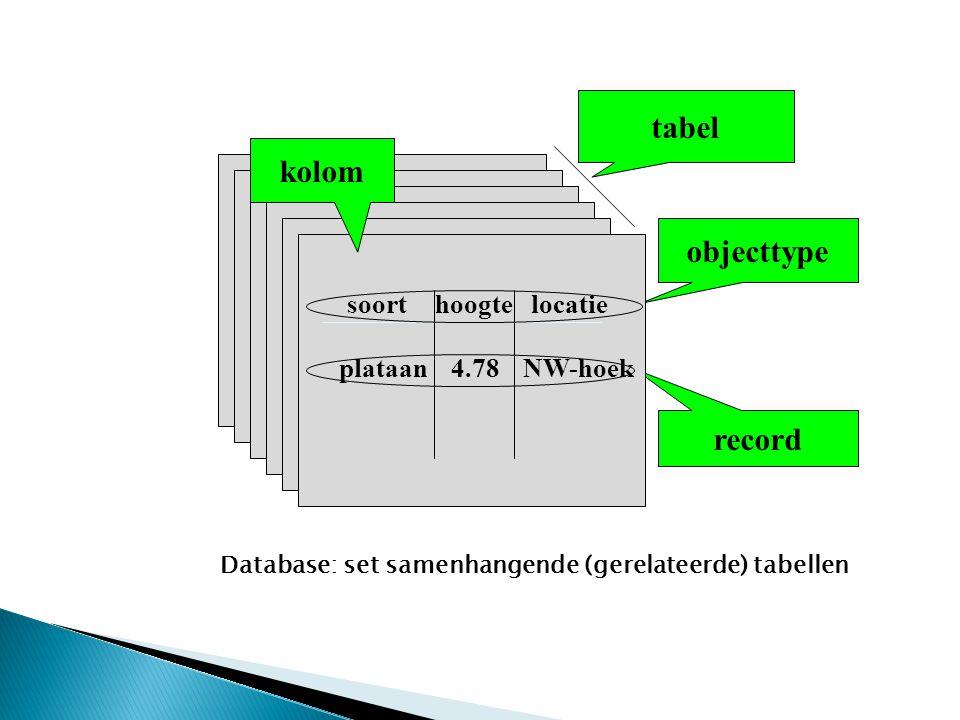 objecttype record tabel kolom