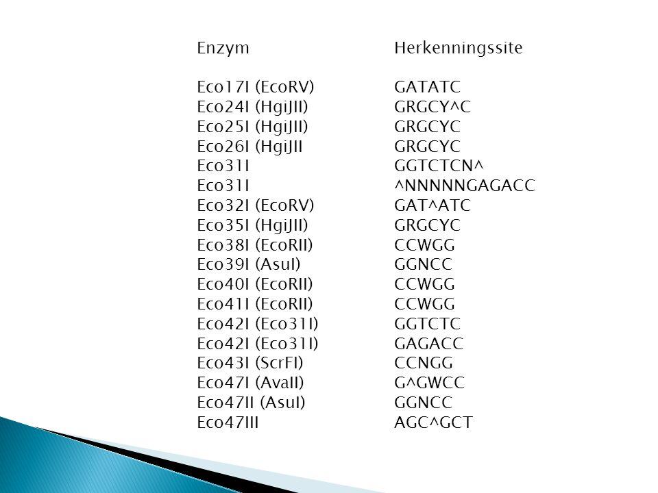 Enzym Herkenningssite