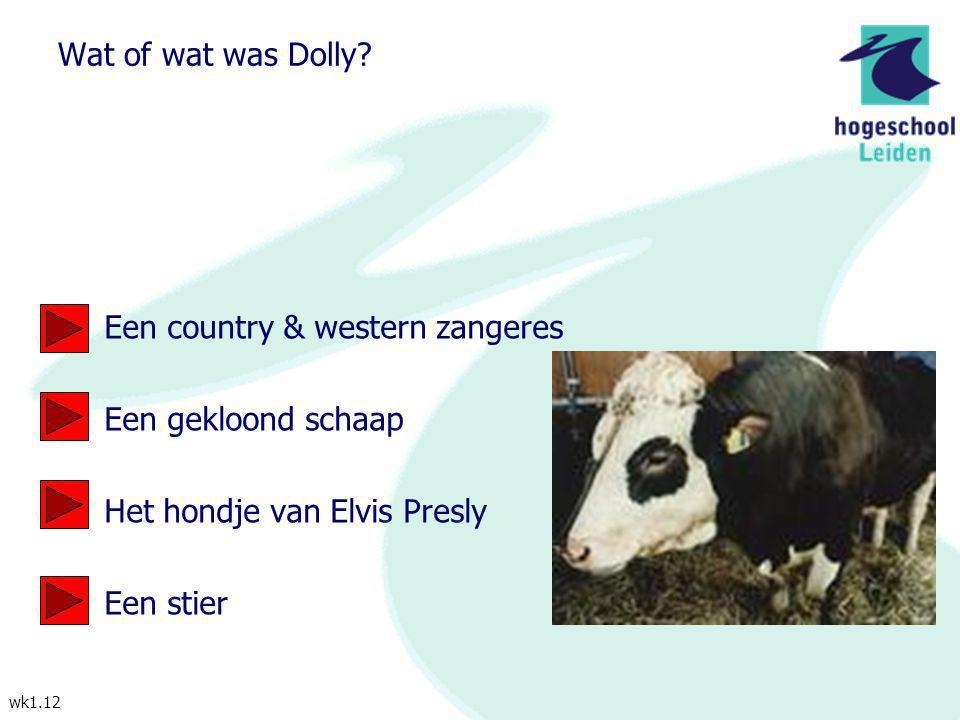 Wat of wat was Dolly Een country & western zangeres. Een gekloond schaap. Het hondje van Elvis Presly.