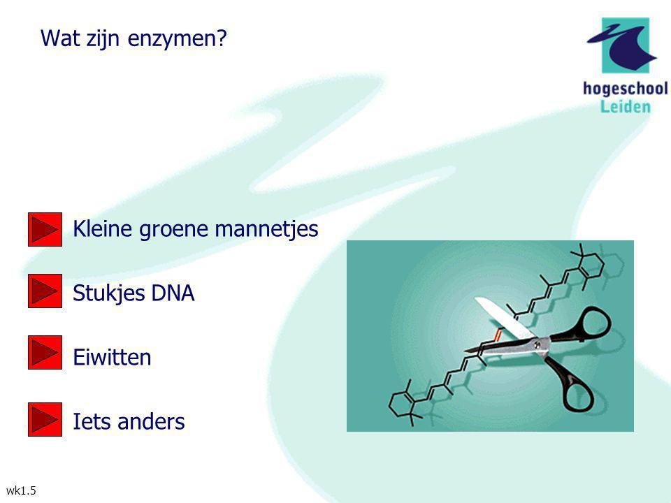 Wat zijn enzymen Kleine groene mannetjes Stukjes DNA Eiwitten Iets anders