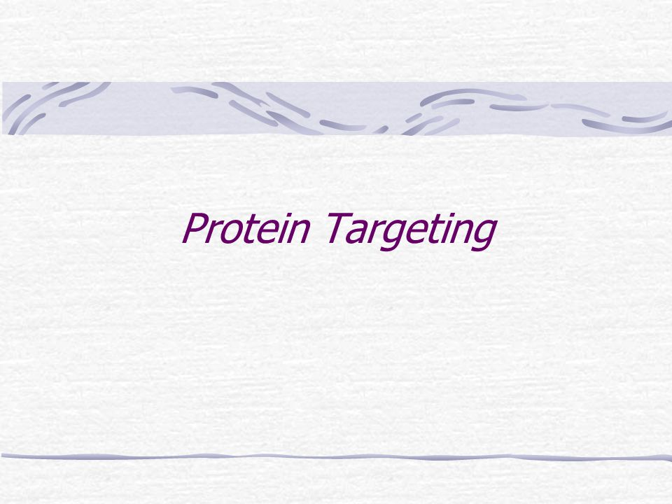 Protein Targeting