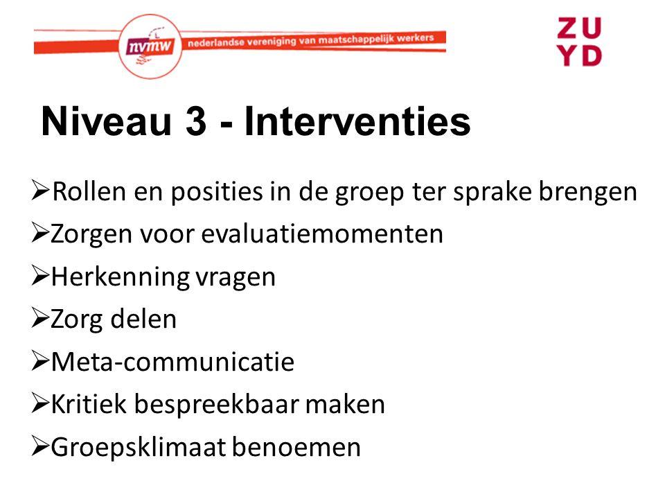 Niveau 3 - Interventies Rollen en posities in de groep ter sprake brengen. Zorgen voor evaluatiemomenten.