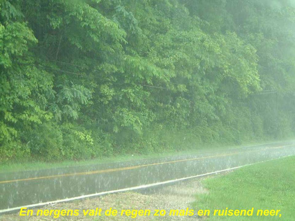 En nergens valt de regen zo mals en ruisend neer,