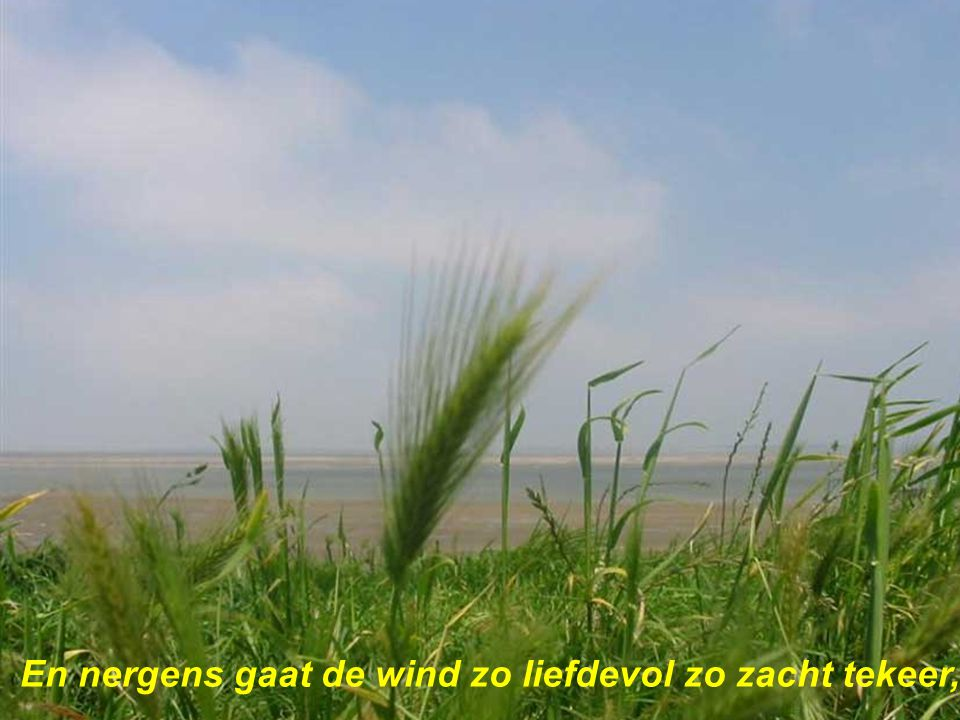 En nergens gaat de wind zo liefdevol zo zacht tekeer,
