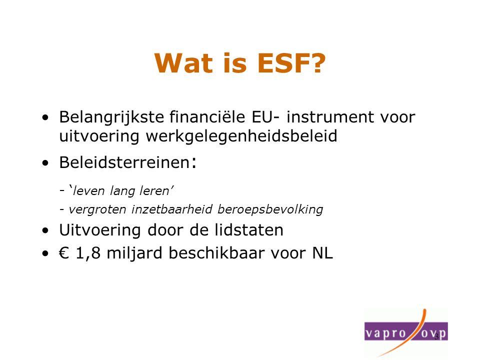 Wat is ESF - 'leven lang leren'