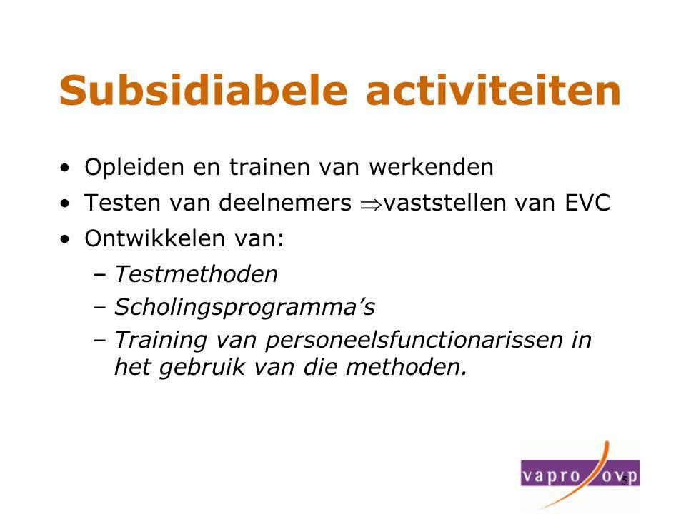 Subsidiabele activiteiten