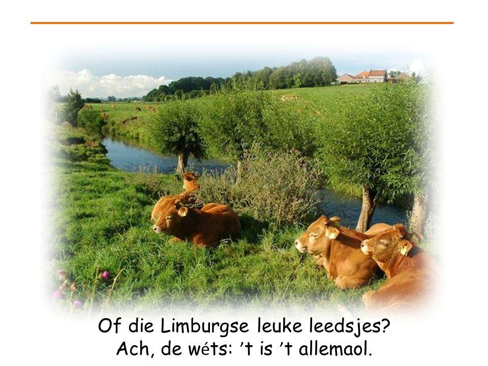 Of die Limburgse leuke leedsjes Ach, de wéts: 't is 't allemaol.
