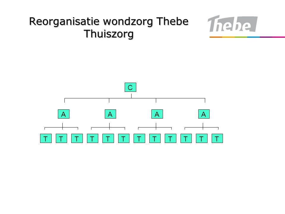 Reorganisatie wondzorg Thebe Thuiszorg