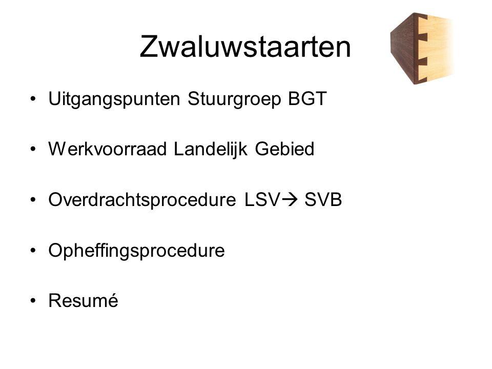 Zwaluwstaarten Uitgangspunten Stuurgroep BGT